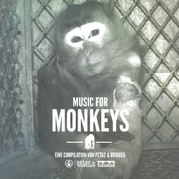 Music For Monkeys cover art
