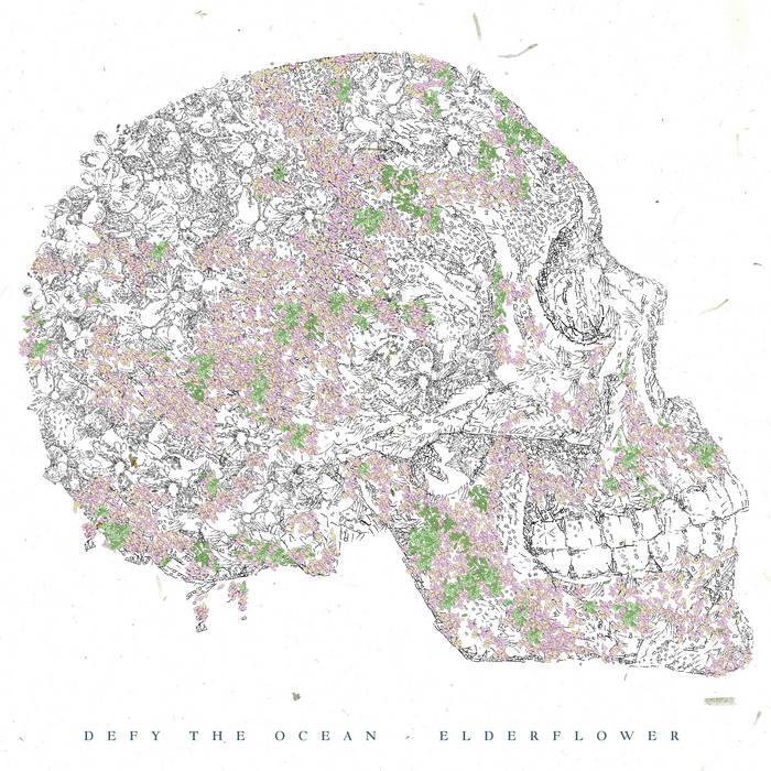 Elderflower cover art