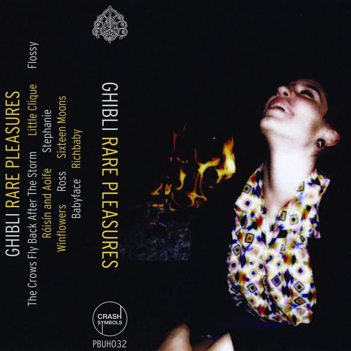Rare Pleasures cover art