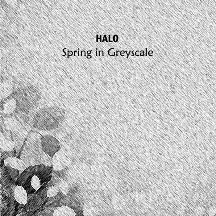 Spring in Greyscale cover art
