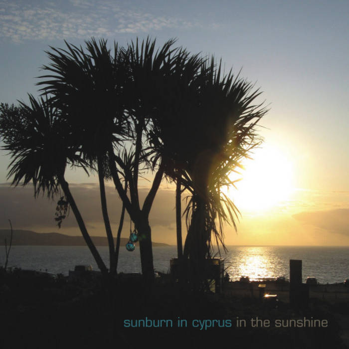 In the sunshine cover art