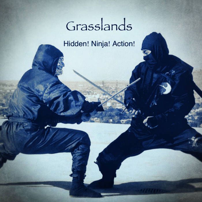Hidden! Ninja! Action! (Continuous Mix) cover art