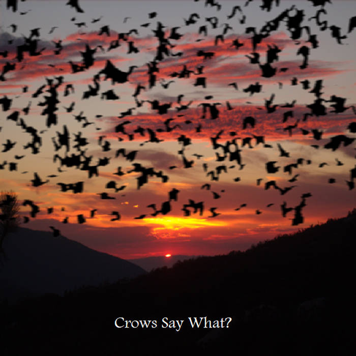 Crows Say What? cover art
