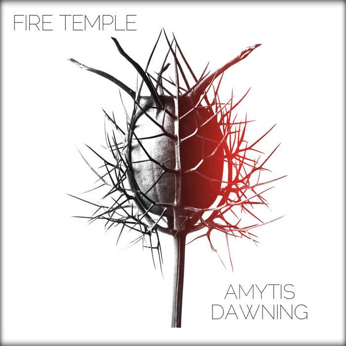 Amytis Dawning cover art