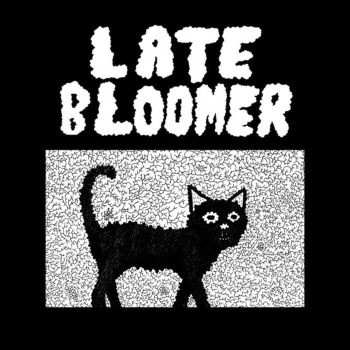 Late Bloomer cover art