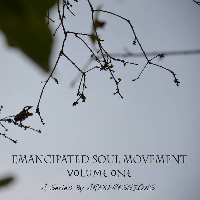 Emancipated Soul Movement Vol.1 cover art