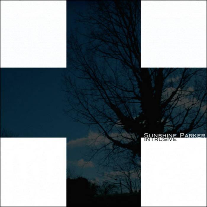SUNSHINE PARKER - Intrusive cover art