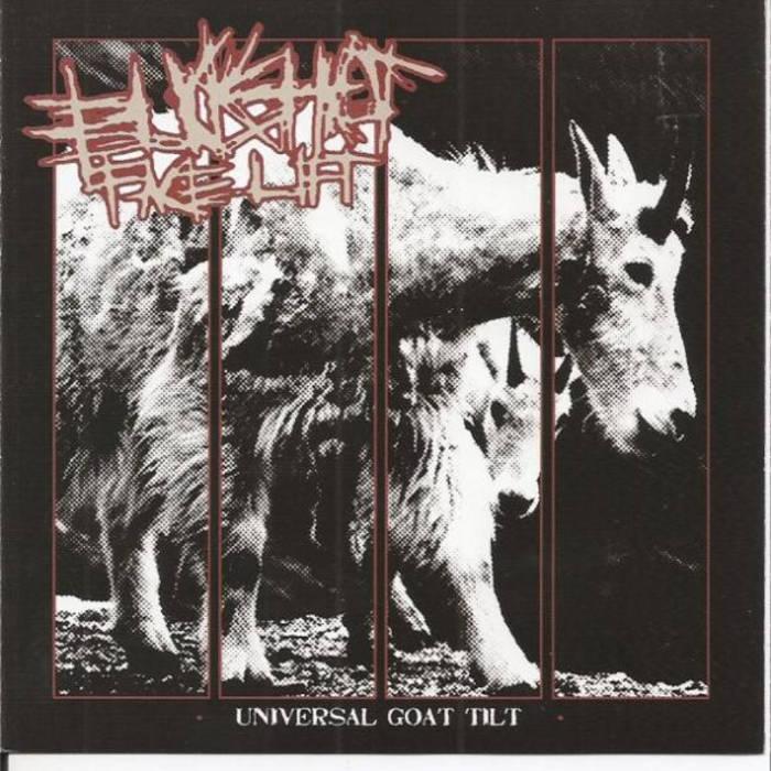 Universal Goat Tilt cover art