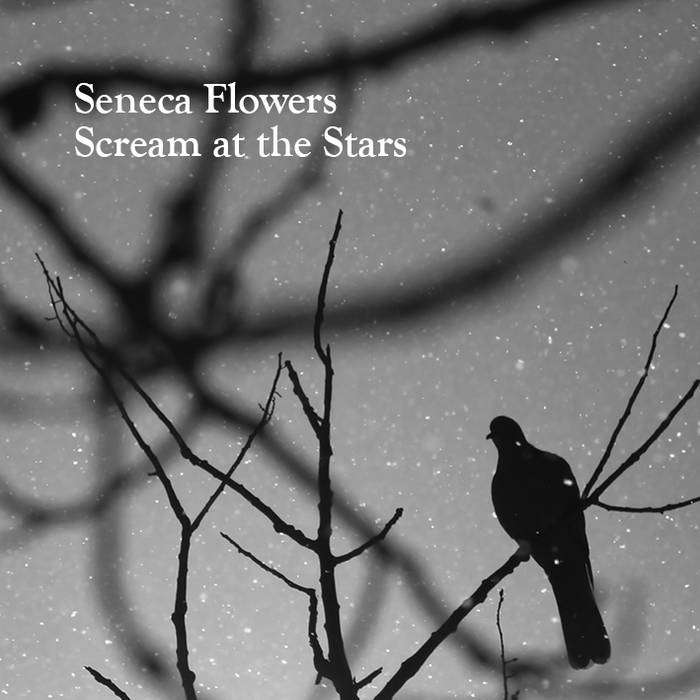 Scream at the Stars cover art