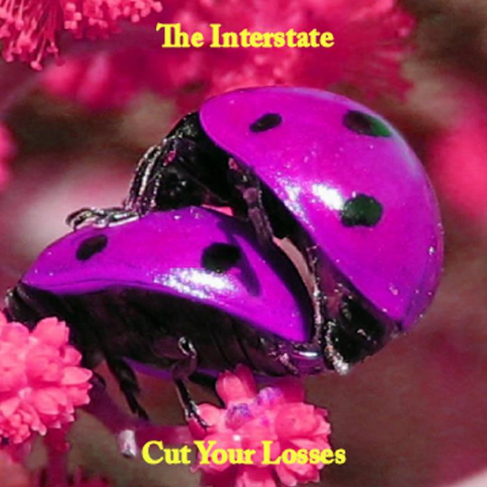 Cut Your Losses cover art