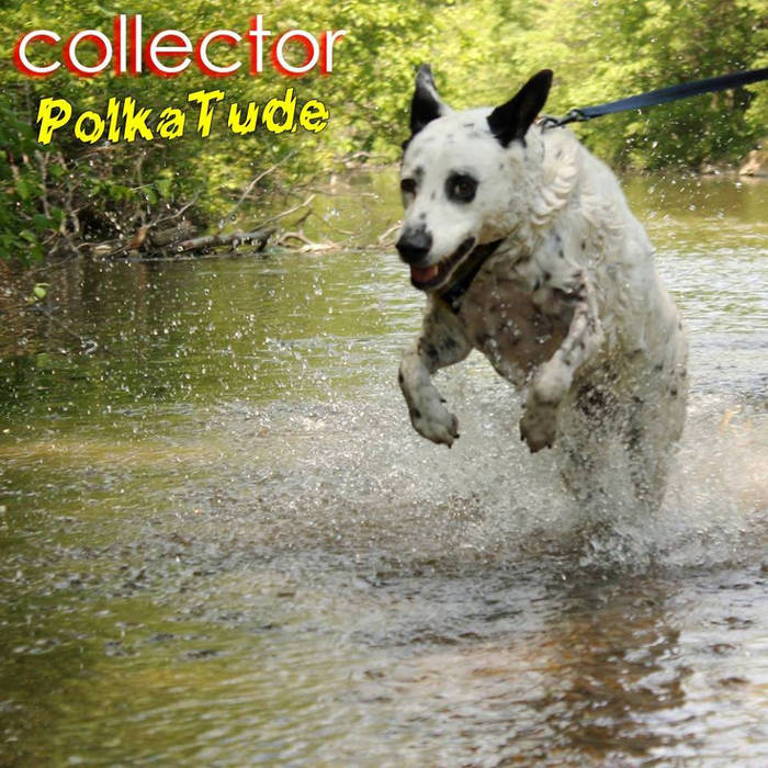PolkaTude cover art