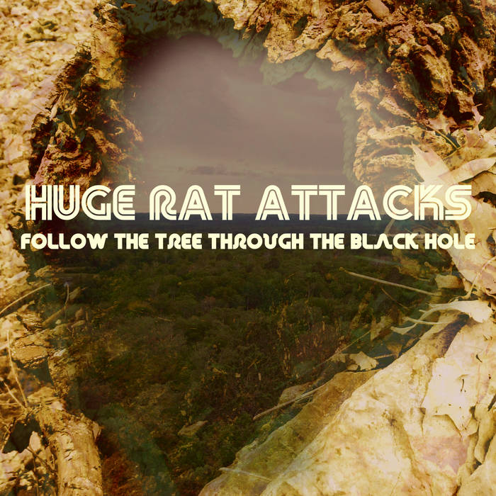 Follow the Tree Through the Black Hole cover art