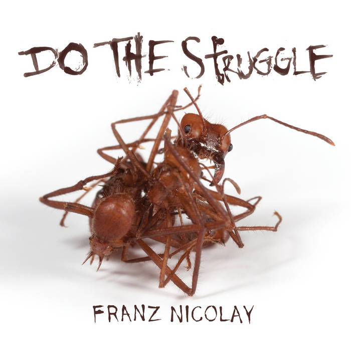 Do The Struggle cover art