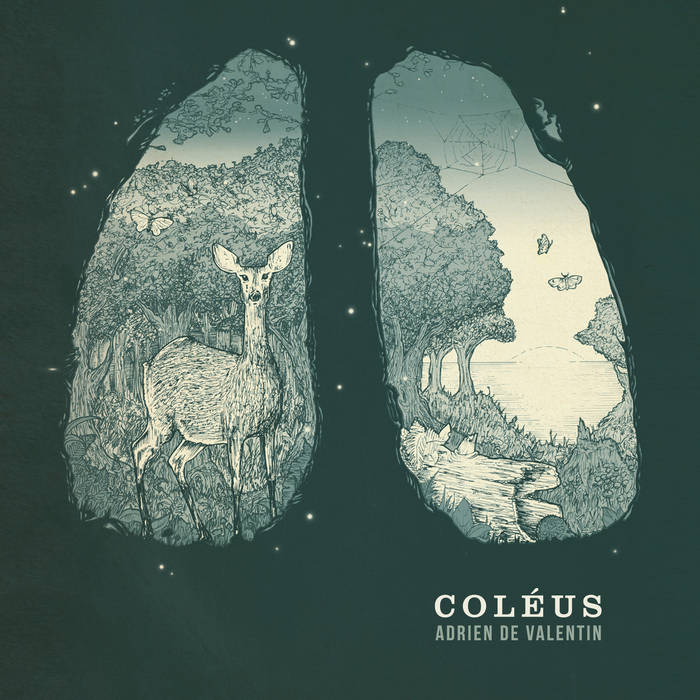 Coléus cover art