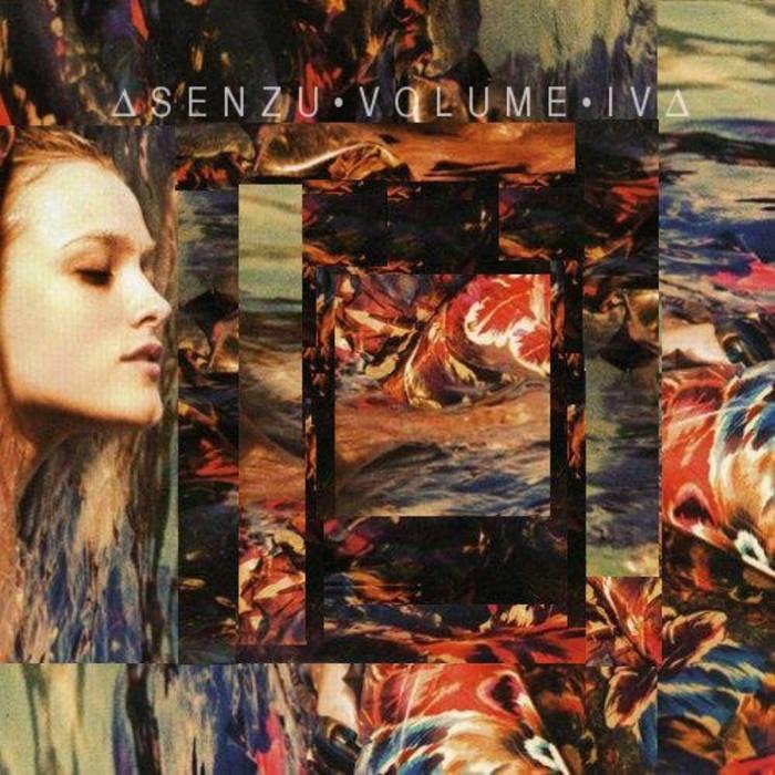 SENZU VOL 4 cover art