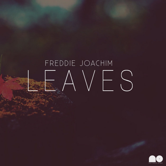 Leaves (Free Download) cover art
