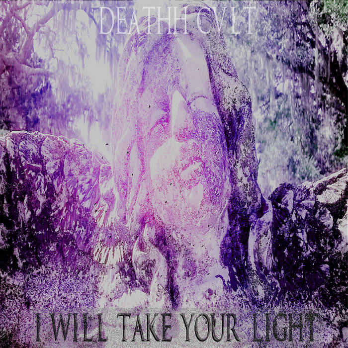 I Will Take Your Light cover art