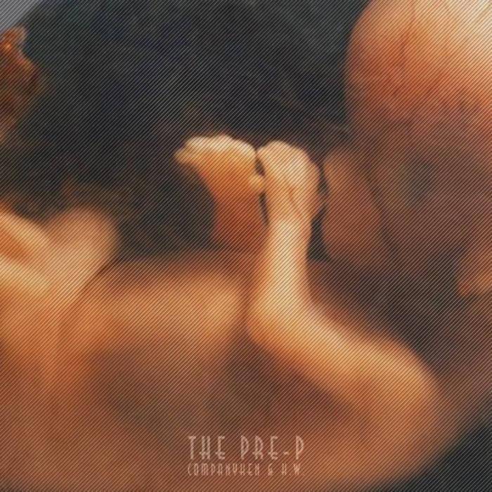 The PRE-P cover art