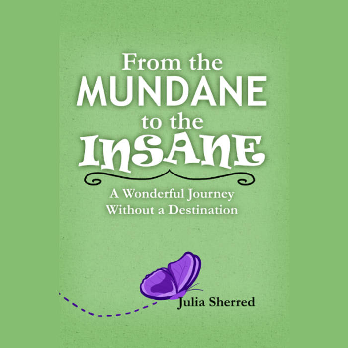 From The Mundane To The Insane: A Wonderful Journey Without A Destination / Audiobook + PDF cover art