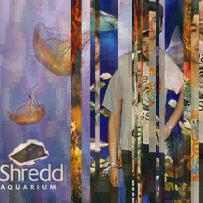 Shredd Aquarium cover art