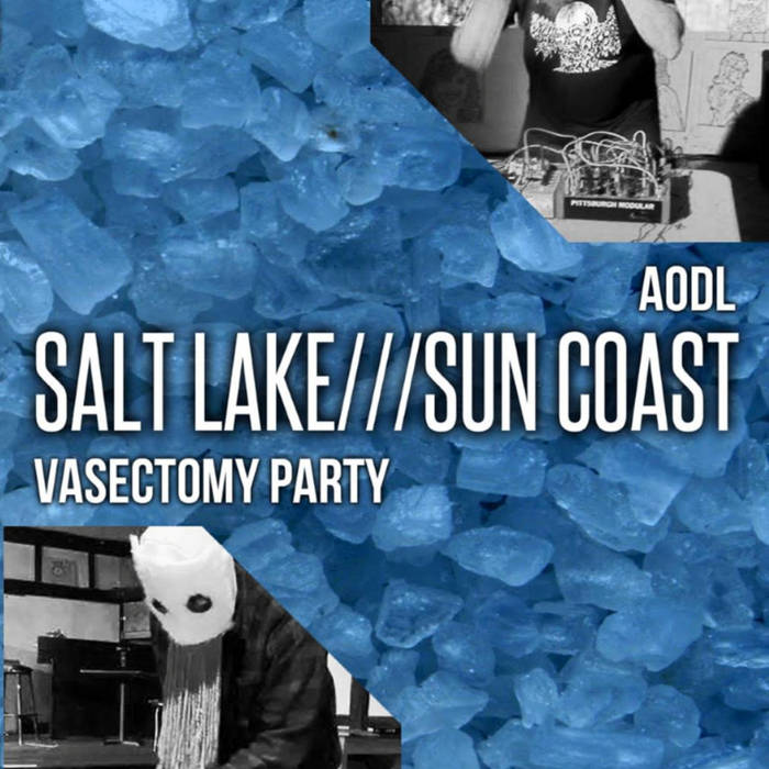 SALT LAKE///SUN COAST cover art