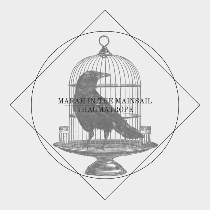 Thaumatrope cover art