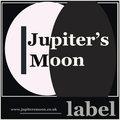Jupiter's Moon image