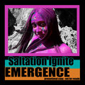 Saltation Ignite image