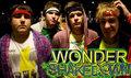 Wonder Shakedown! image