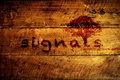 Signals image