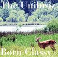 The Unibroz image