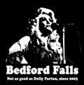 Bedford Falls image