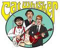 Cat Whisker image