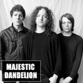 Majestic Dandelion image