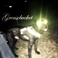 Greasebucket image