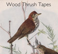 Wood Thrush Tapes image