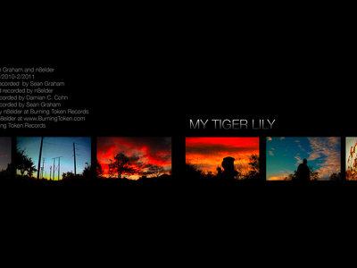MY TIGER LILY main photo
