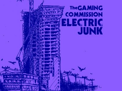 "Electric Junk 12"" main photo"