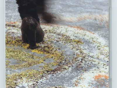Dance in a ricecarpet - DVD main photo
