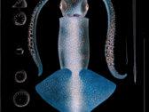 Chromatophores - Limited Edition Metal Box Set photo