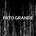 Pato Grande image