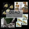 quad image
