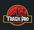 Tragic Pro image