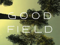 Good Field image