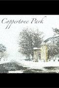 Coppertone Park image