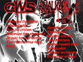 C.W.S / ANALKHOLIC Split Album photo