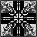Scolex Recordings image