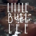 little bull lee image