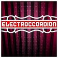 Electroccordion image