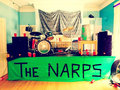 the NARPS image